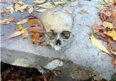 Encontraron un cráneo humano debajo de un puente