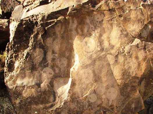 Los primeros rastros humanos en nuestra región y pueblos originarios.