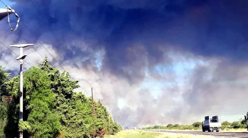 Un incendio intencional consumió varias hectáreas en Bowen
